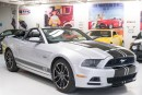 Used 2013 Ford Mustang GT Premium for sale in Paris, ON