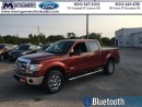 Used 2014 Ford F-150 XLT  - Bluetooth -  SiriusXM for sale in Kincardine, ON