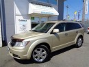 Used 2010 Dodge Journey R/T AWD Nav, Sunroof, Leather, 7 Passenger for sale in Langley, BC
