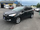 Used 2013 Ford Escape SEL for sale in Cornwall, ON