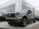 Used 2014 Ford F-150 FX4 Luxury Package 3.5L Ecoboost, Leather, H/C Front Seats for sale in Edmonton, AB