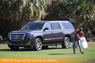 Used 2015 Cadillac Escalade ESV Premium Navigation DVD 360 Cam for sale in Winnipeg, MB