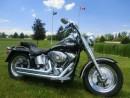 Used 2003 Harley-Davidson FAT BOY FLSTFI FATBOY SOFTAIL for sale in Blenheim, ON