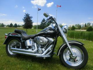Used 2003 Harley-Davidson FAT BOY FLSTFI FATBOY SOFTAIL for sale in Blenheim, ON