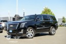 Used 2016 Cadillac Escalade Premium Collection for sale in Langley, BC