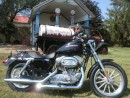 Used 2005 Harley-Davidson Sportster 883 XL 883 LOW for sale in Blenheim, ON