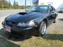 Used 2002 Ford Mustang GT for sale in Brantford, ON
