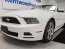 Used 2013 Ford Mustang GT 5.0L V8 Convertible with heated seats. Come on now, let your hair down! for sale in Edmonton, AB