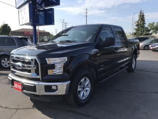 Used 2016 Ford F-150 XLT Ecoboost Twin-Turbo! for sale in Brantford, ON