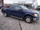 Used 2011 Ford F-150 XLT for sale in Mono, ON
