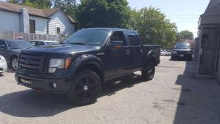Used 2009 Ford F-150 FX4 for sale in Cambridge, ON
