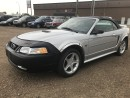 Used 2000 Ford Mustang GT Convertible for sale in Stettler, AB