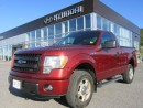 Used 2014 Ford F-150 STX for sale in Corner Brook, NL