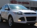 Used 2014 Ford Escape TITANIUM, PARORAMIC SUNROOF, BACKUP CAM, HEATED SEATS, USB /AUX for sale in Edmonton, AB