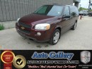 Used 2009 Chevrolet Uplander LS *DVD for sale in Winnipeg, MB