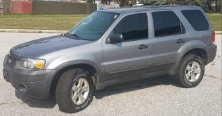 Used 2007 Ford Escape XLT for sale in Windsor, ON