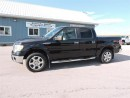 Used 2010 Ford F-150 XLT for sale in Gorrie, ON