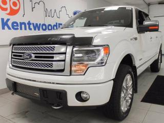 Used 2013 Ford F-150 Platinum- FULLY LOADED! Ohhhhh hot dayum for sale in Edmonton, AB