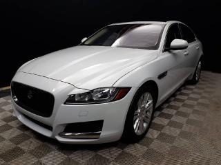 Used 2016 Jaguar XF Premium for sale in Edmonton, AB