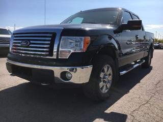 Used 2010 Ford F-150 XLT for sale in Bolton, ON