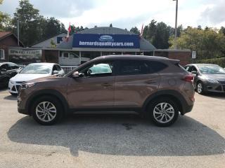 Used 2016 Hyundai Tucson SE for sale in Flesherton, ON