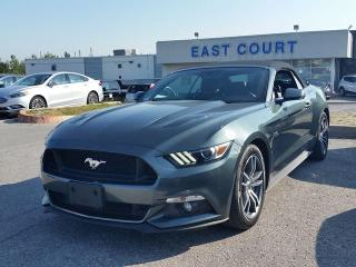 Used 2015 Ford Mustang GT Premium for sale in Scarborough, ON