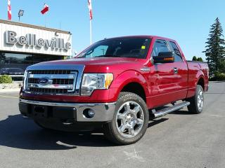 Used 2013 Ford F-150 XLT for sale in Belleville, ON