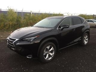 Used 2015 Lexus NX 300h Executive, Navi, Htd/Cooled Le for sale in Winnipeg, MB
