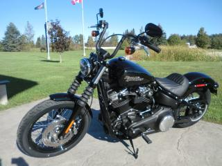 New 2018 Harley-Davidson Softail FXBB STREET BOB for sale in Blenheim, ON