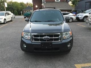Used 2009 Ford Escape XLT for sale in Brampton, ON