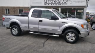 Used 2010 Ford F-150 XLT for sale in Mono, ON