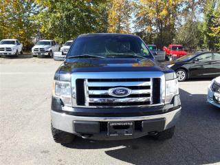 Used 2012 Ford F-150 XLT for sale in Quesnel, BC