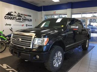 Used 2010 Ford F-150 for sale in Coquitlam, BC