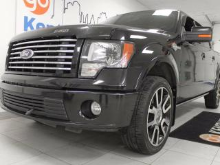 Used 2010 Ford F-150 Harley Davidson 5.4L V8 sunroof, Heated leather/cooled front seats with heated leather back seats, back up cam, for sale in Edmonton, AB
