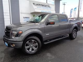 Used 2014 Ford F-150 FX4 Crew, Eco-Boost, Nav, Leather, Sunroof for sale in Langley, BC