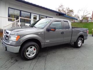 Used 2013 Ford F-150 XLT for sale in Halifax, NS