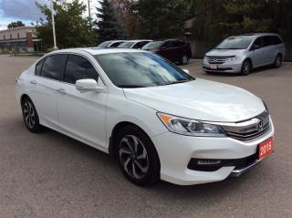 Used 2016 Honda Accord Sedan EX-L..1 0wner..accident free.. for sale in Milton, ON