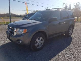 Used 2010 Ford Escape XLT for sale in Gormley, ON