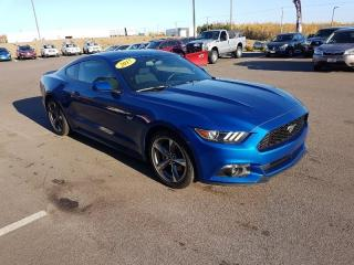 Used 2017 Ford Mustang V6 for sale in Dieppe, NB