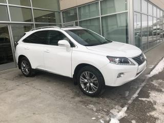 Used 2014 Lexus RX 350 BLIND SPOT/NAV/HEATED AND COOLED SEATS/SUNROOF for sale in Edmonton, AB
