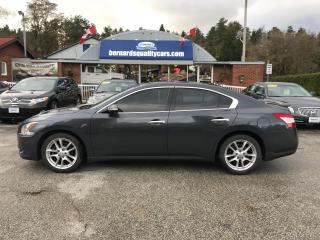Used 2009 Nissan Maxima 3.5 SV for sale in Flesherton, ON