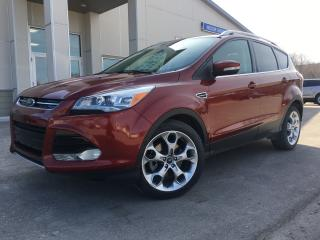 Used 2014 Ford Escape Titanium Leather Navigation Park Assist for sale in Selkirk, MB