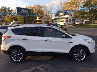 Used 2014 Ford Escape SE 4x4 for sale in Dunnville, ON