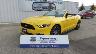 Used 2017 Ford Mustang 2.3L EcoBoost 310Hp Premium Leather, Navi for sale in Stratford, ON