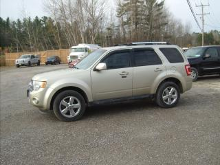 Used 2011 Ford Escape Limited for sale in Fenelon Falls, ON
