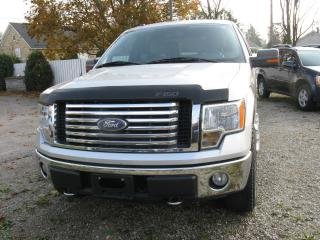 Used 2010 Ford F-150 cloth for sale in Ailsa Craig, ON