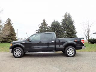 Used 2014 Ford F-150 XTR SUPER CREW V8 for sale in Thornton, ON