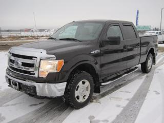 Used 2013 Ford F-150 XLT for sale in Thunder Bay, ON