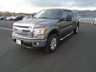 Used 2014 Ford F-150 XTR for sale in Halifax, NS