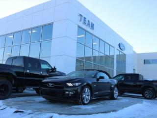 Used 2015 Ford Mustang GT Premium for sale in Edmonton, AB